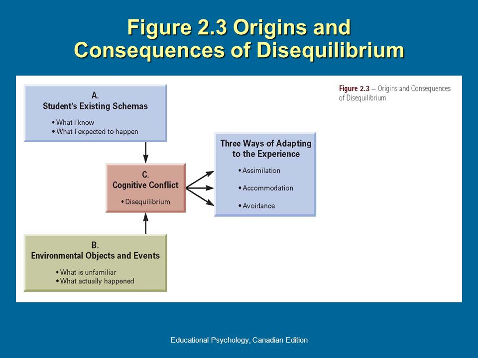 Figure 2.3 Origins and Consequences of Disequilibrium