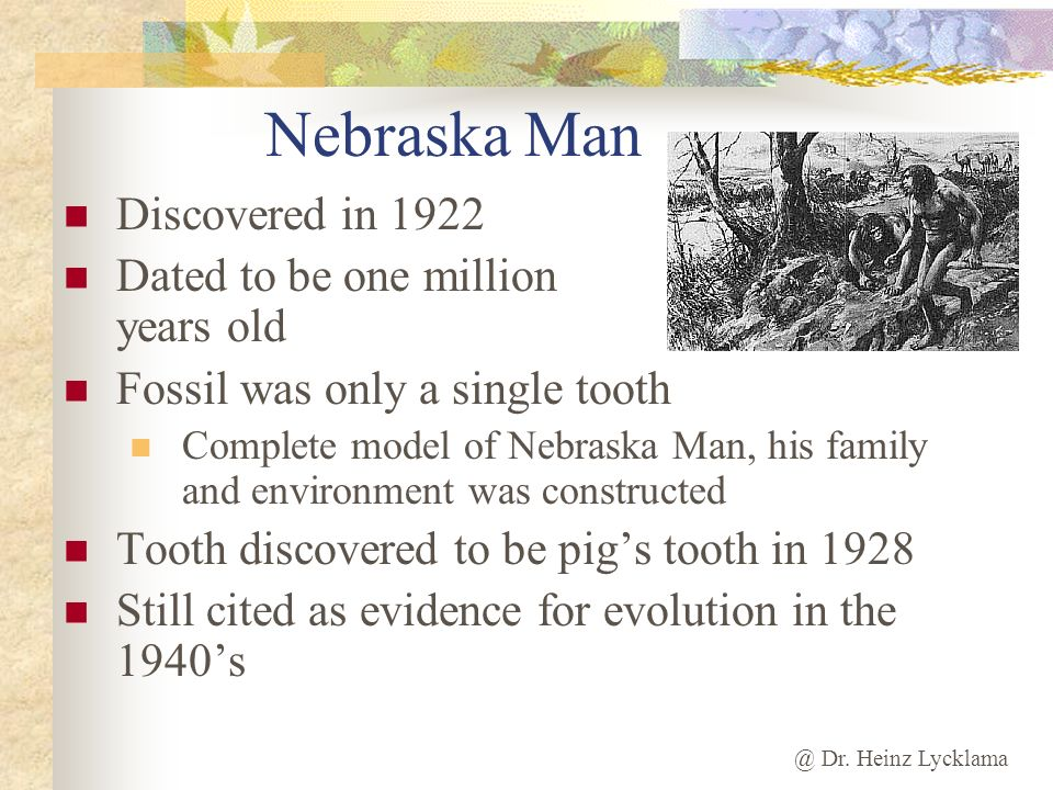 Nebraska Man Discovered in 1922 Dated to be one million years old