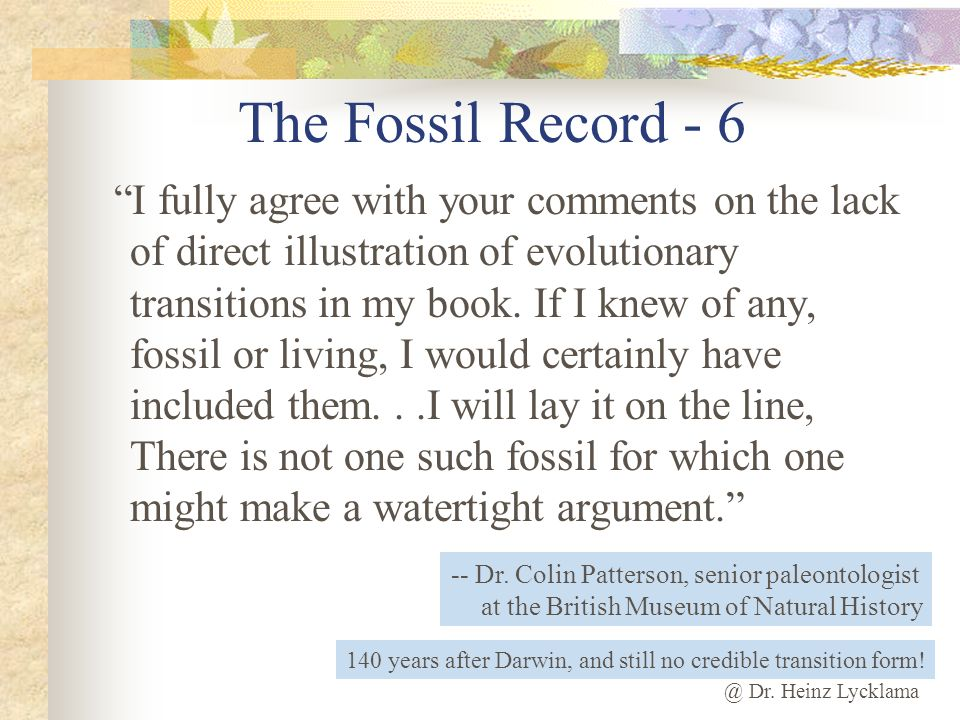 The Fossil Record - 6