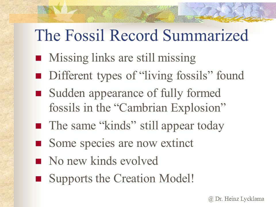 The Fossil Record Summarized