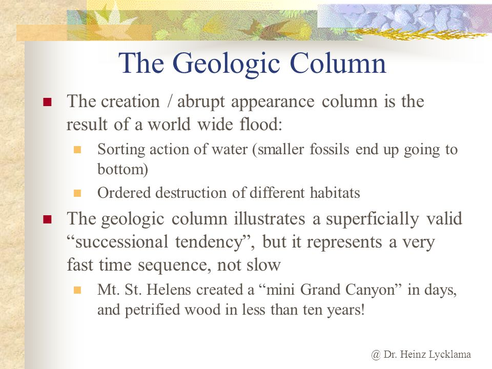 The Geologic Column The creation / abrupt appearance column is the result of a world wide flood: