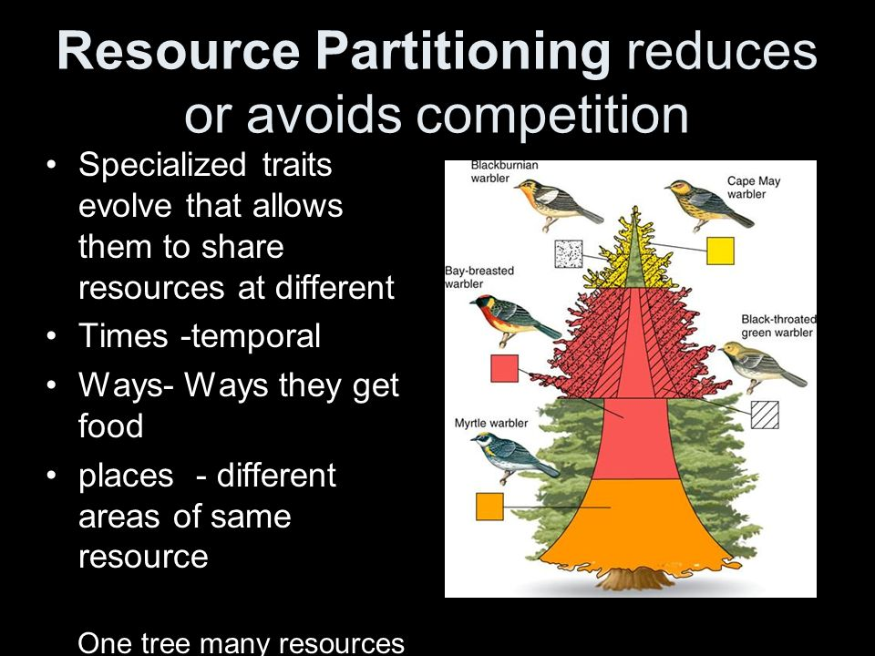 Resource Partitioning reduces or avoids competition