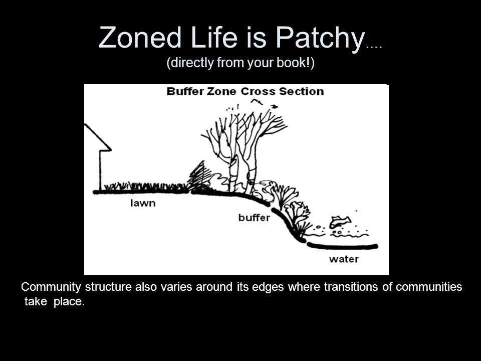 Zoned Life is Patchy…. (directly from your book!)