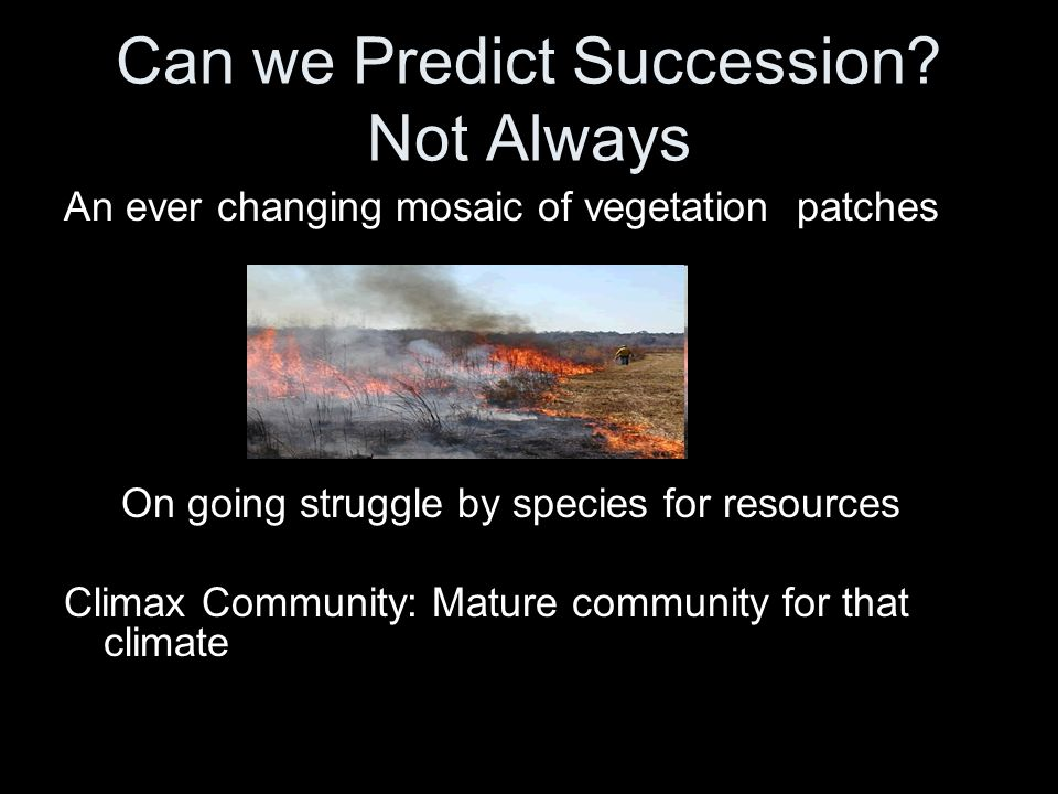 Can we Predict Succession Not Always