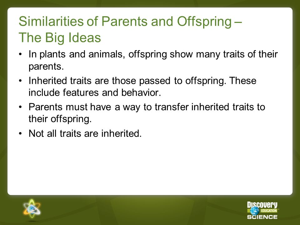 Similarities of Parents and Offspring – The Big Ideas