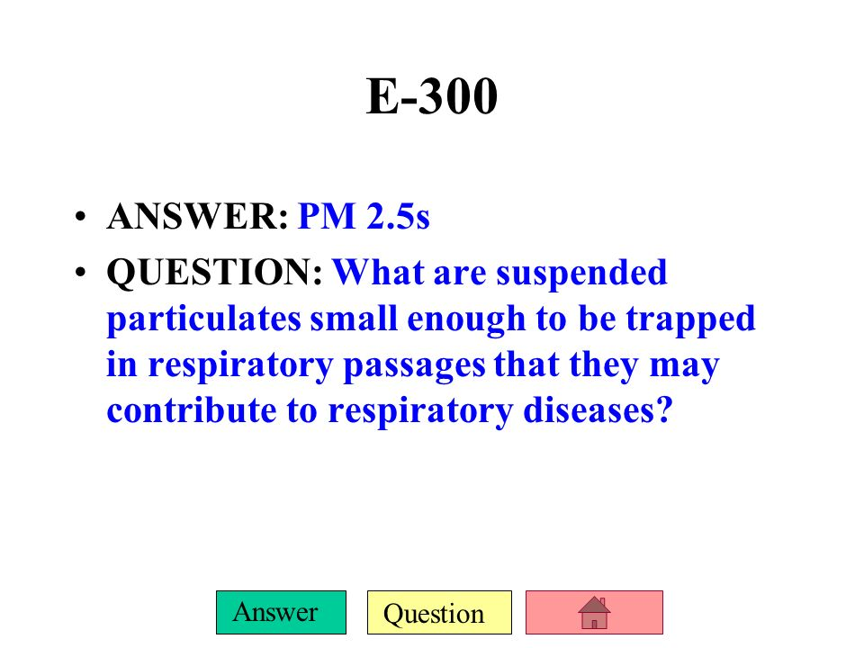 E-300 ANSWER: PM 2.5s.