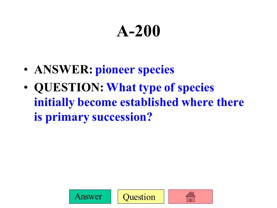 A-200 ANSWER: pioneer species
