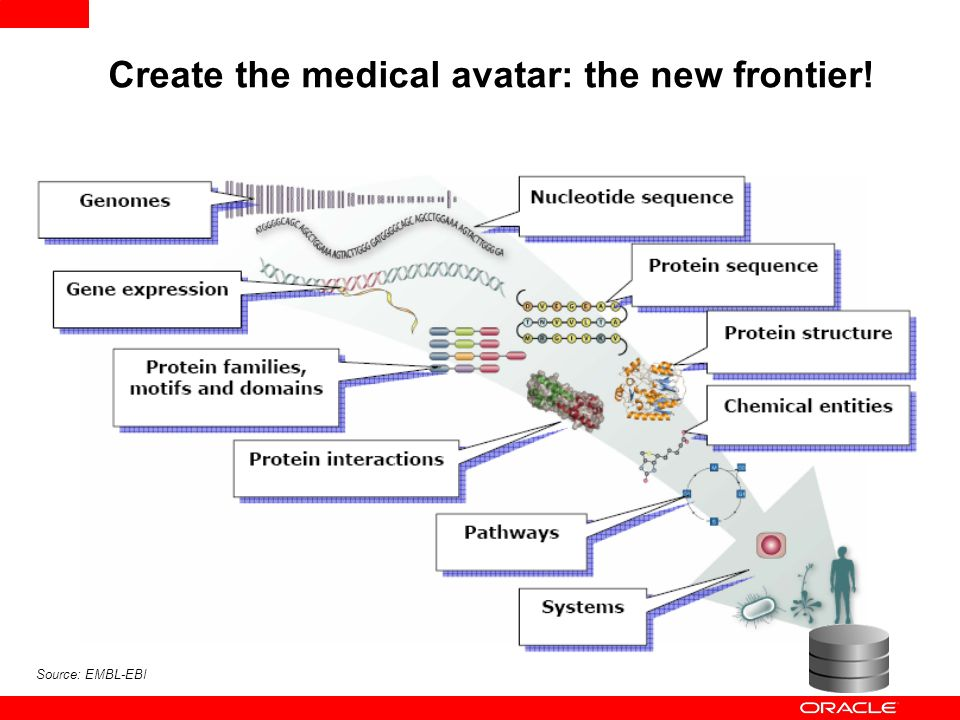 Create the medical avatar: the new frontier!
