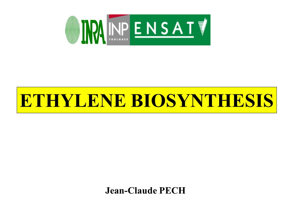ETHYLENE BIOSYNTHESIS