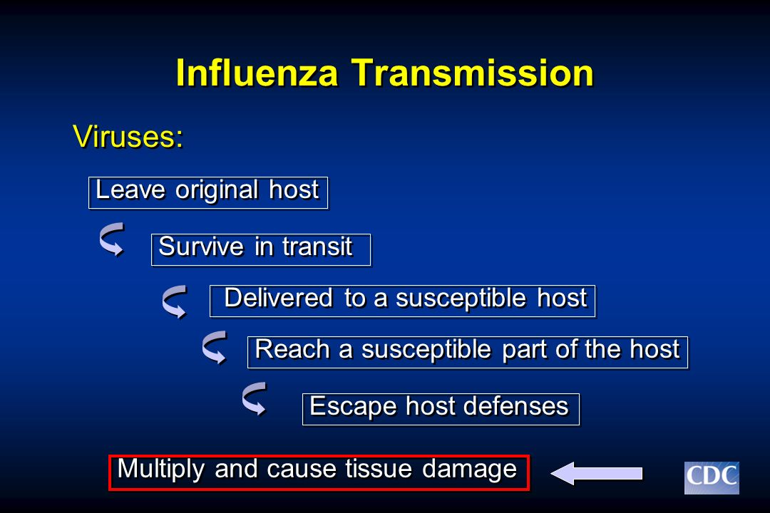 Influenza Transmission