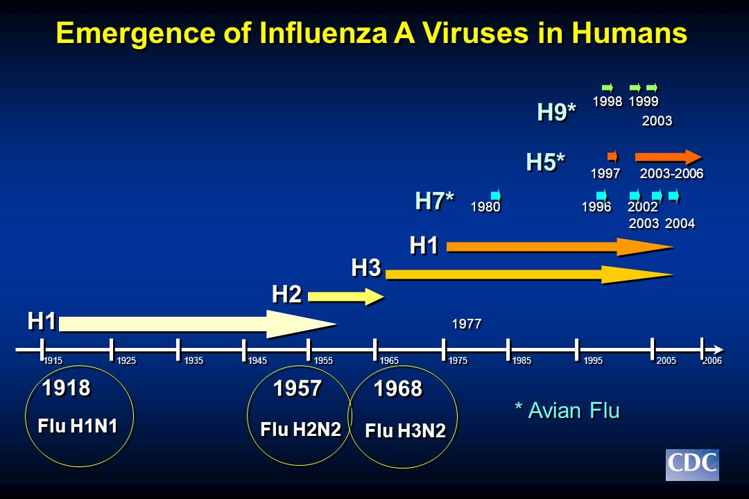 Emergence of Influenza A Viruses in Humans