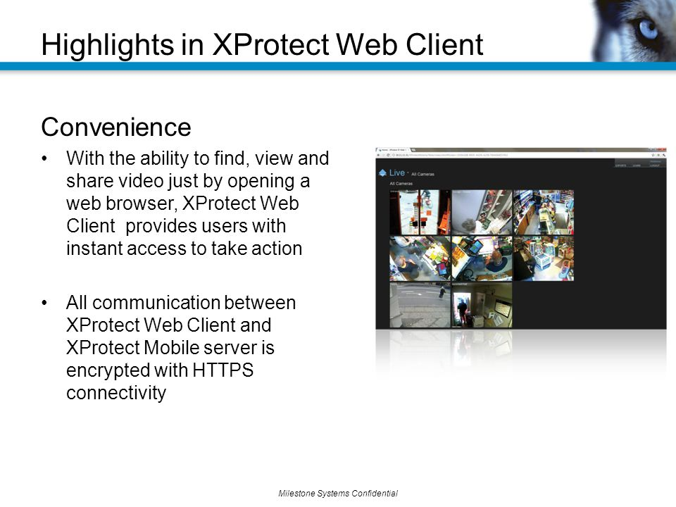 Highlights in XProtect Web Client