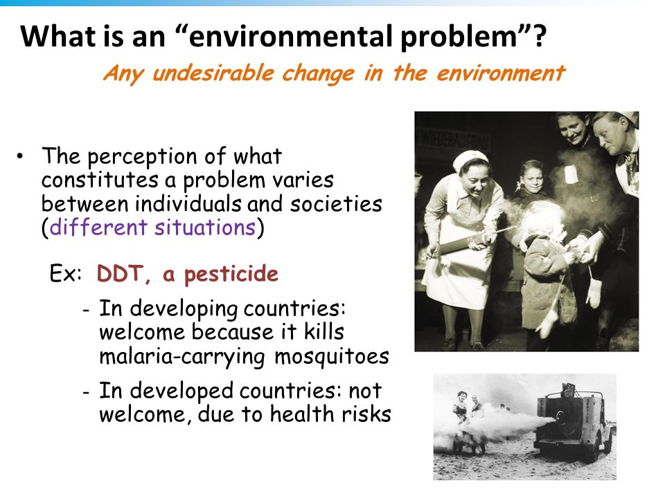 What is an environmental problem