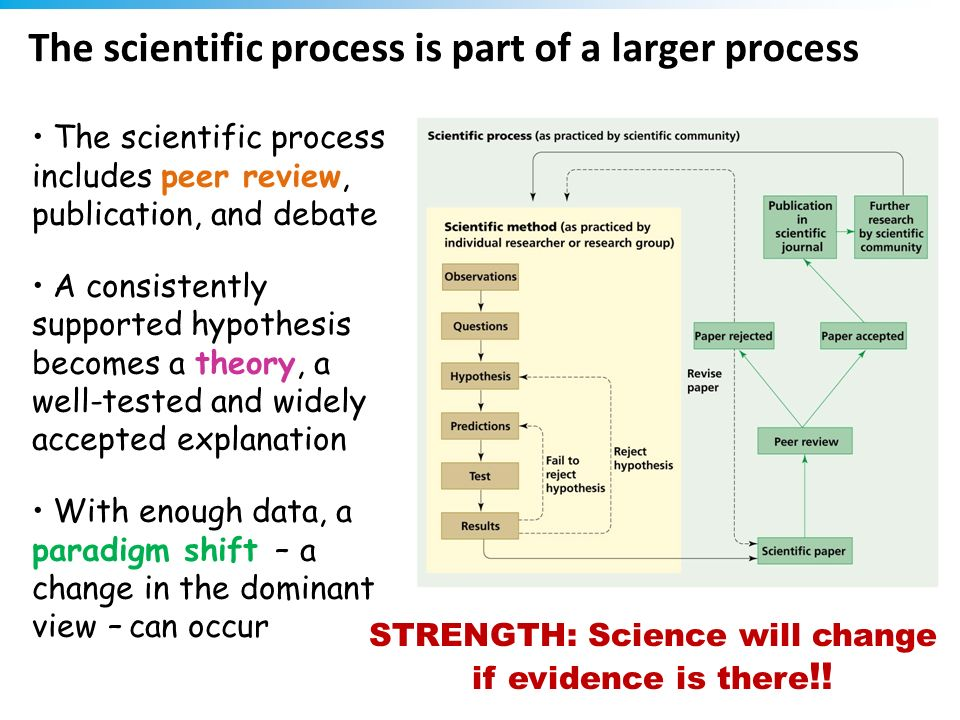 The scientific process is part of a larger process