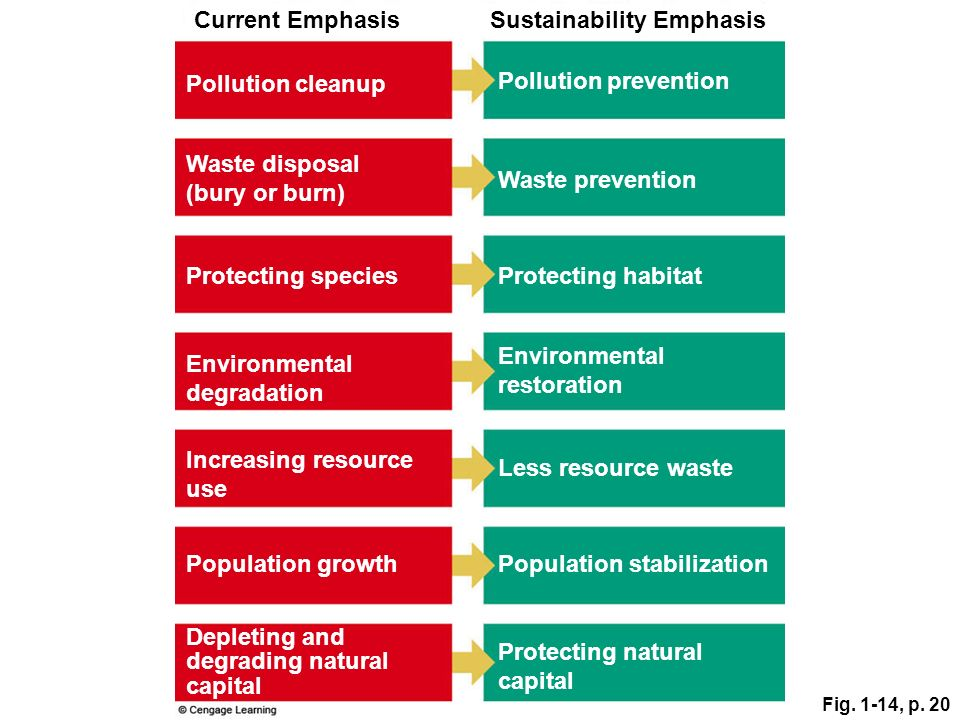 Sustainability Emphasis