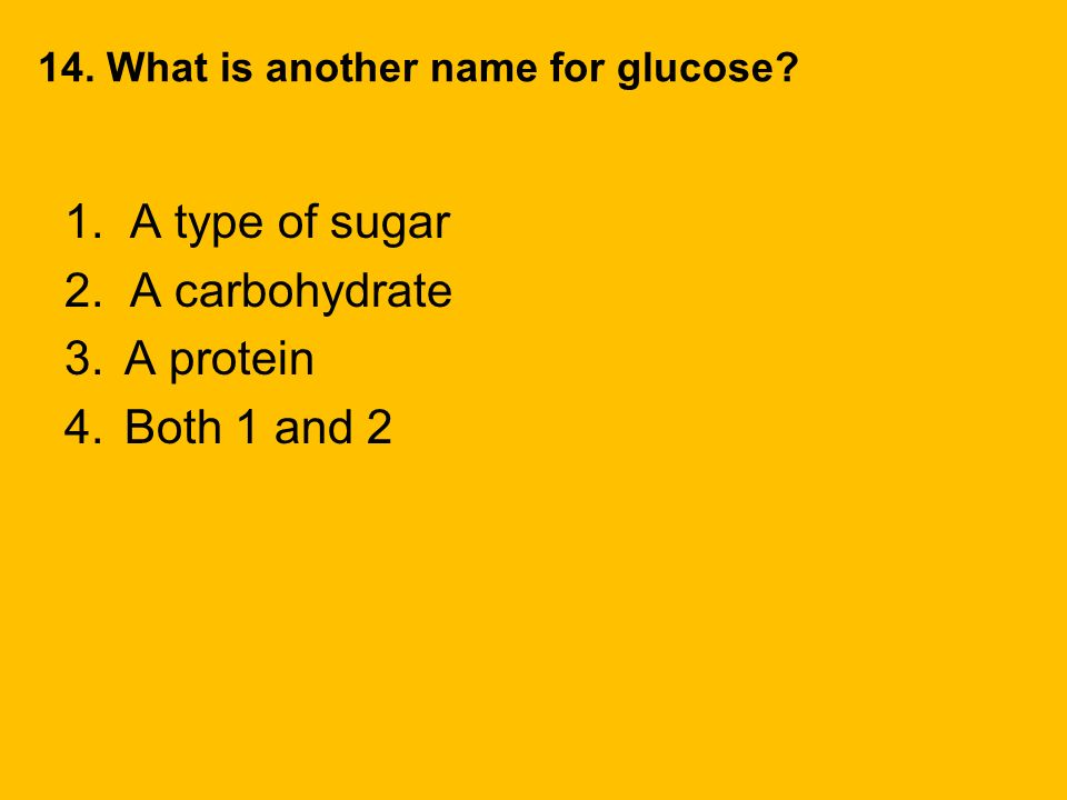 1. A type of sugar 2. A carbohydrate A protein Both 1 and 2