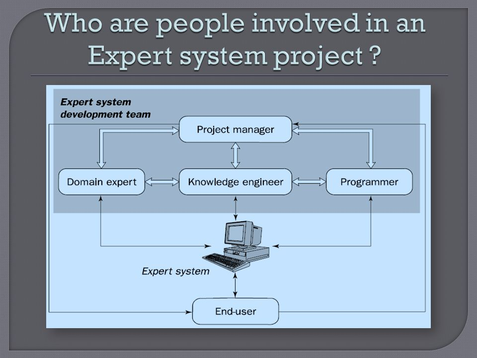 Who are people involved in an Expert system project