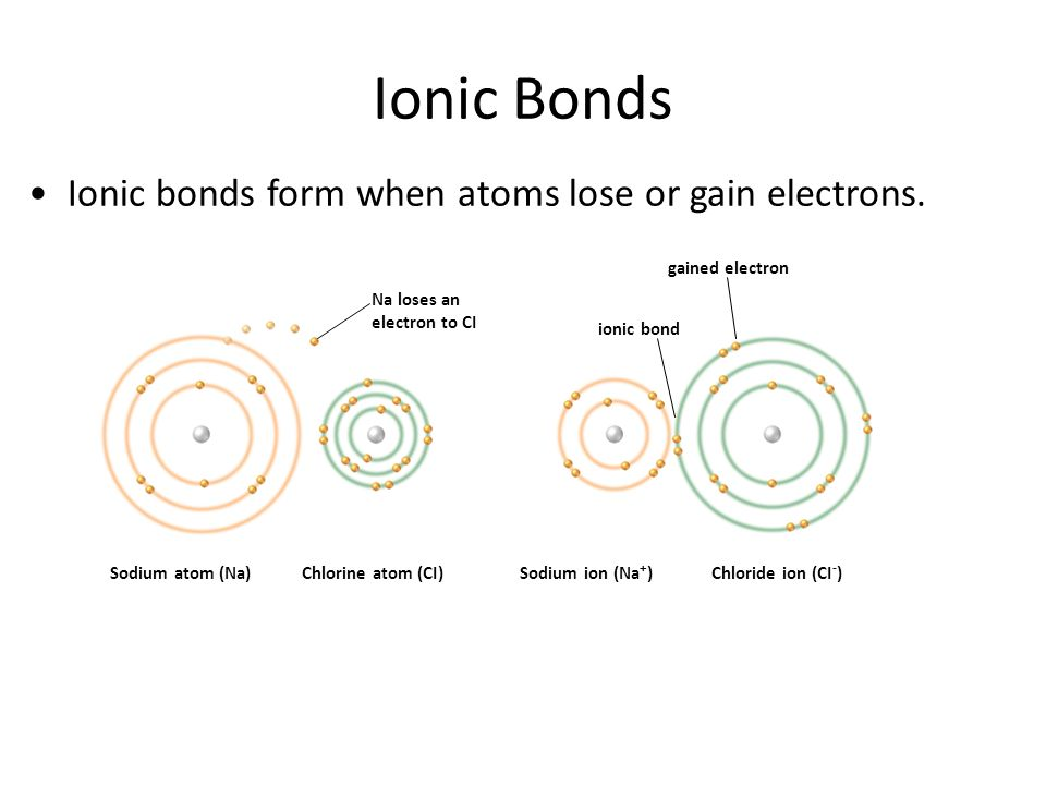 Ionic Bonds Ionic bonds form when atoms lose or gain electrons.