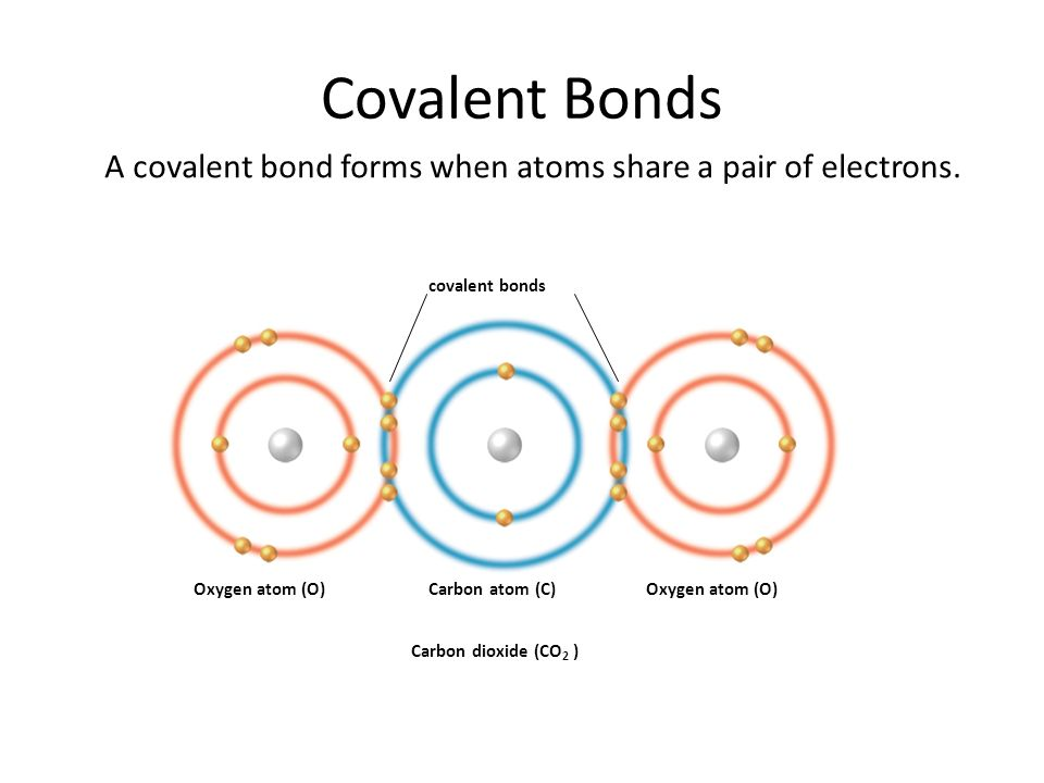Covalent Bonds A covalent bond forms when atoms share a pair of electrons. covalent bonds. Oxygen atom (O)