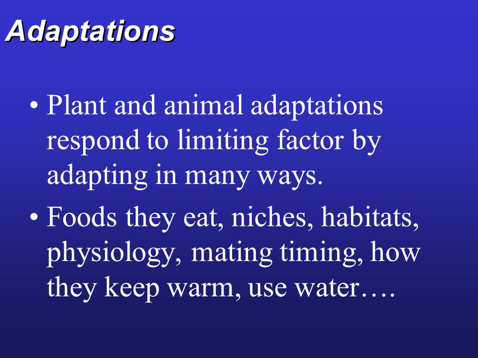 Adaptations Plant and animal adaptations respond to limiting factor by adapting in many ways.
