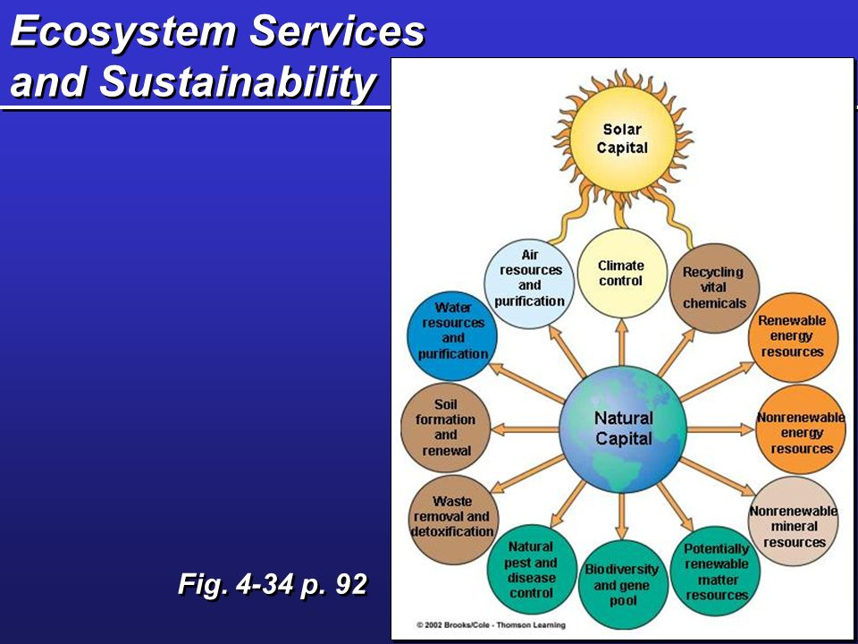 Ecosystem Services and Sustainability