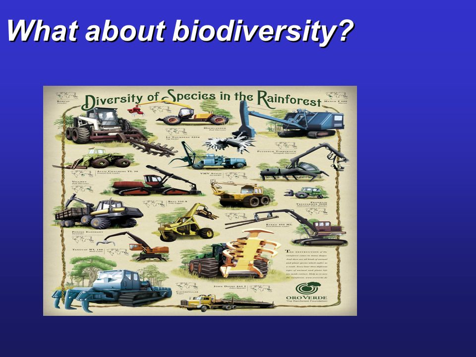 What about biodiversity