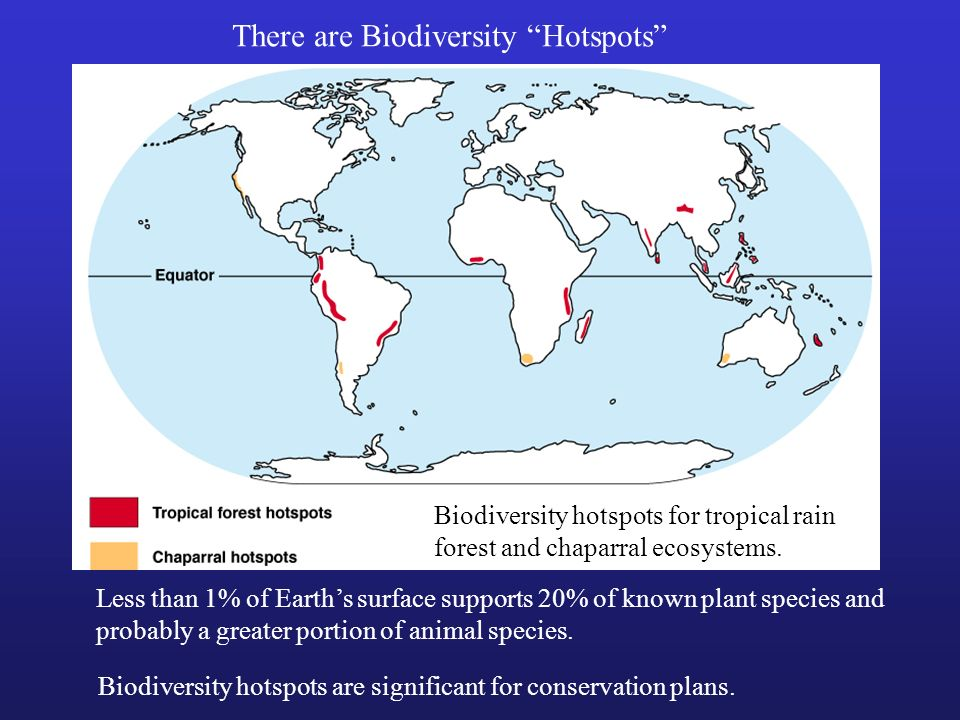 There are Biodiversity Hotspots