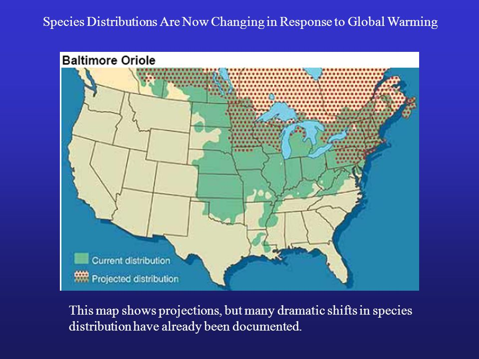 Species Distributions Are Now Changing in Response to Global Warming