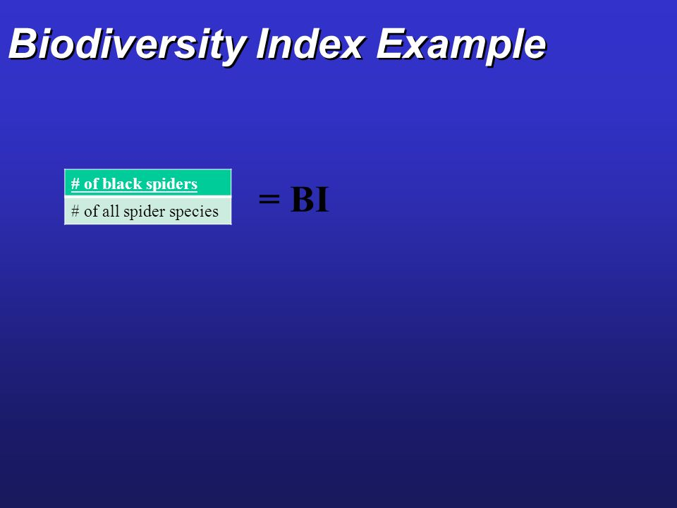 Biodiversity Index Example