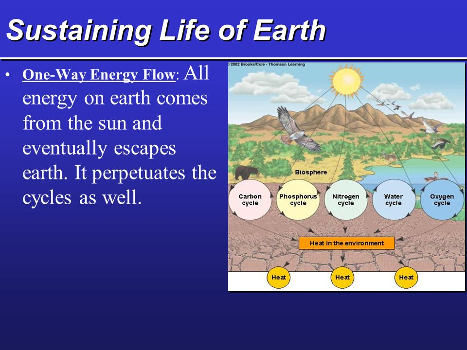Sustaining Life of Earth