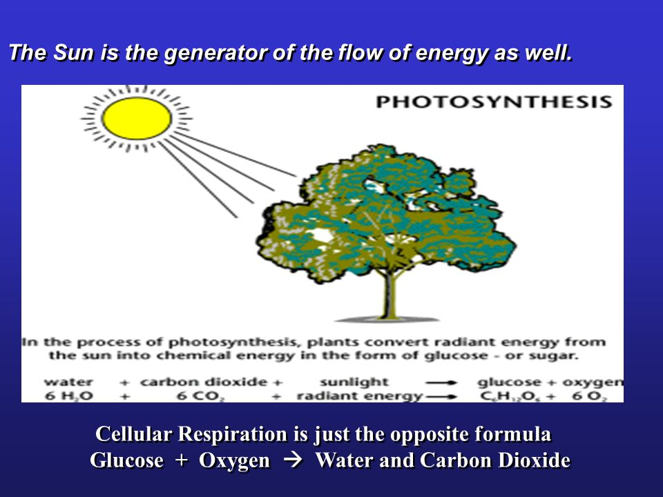 The Sun is the generator of the flow of energy as well.