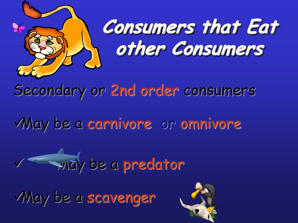 Consumers that Eat other Consumers