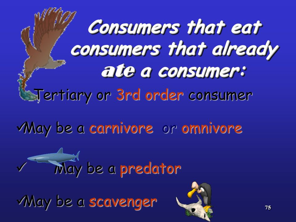 Consumers that eat consumers that already ate a consumer:
