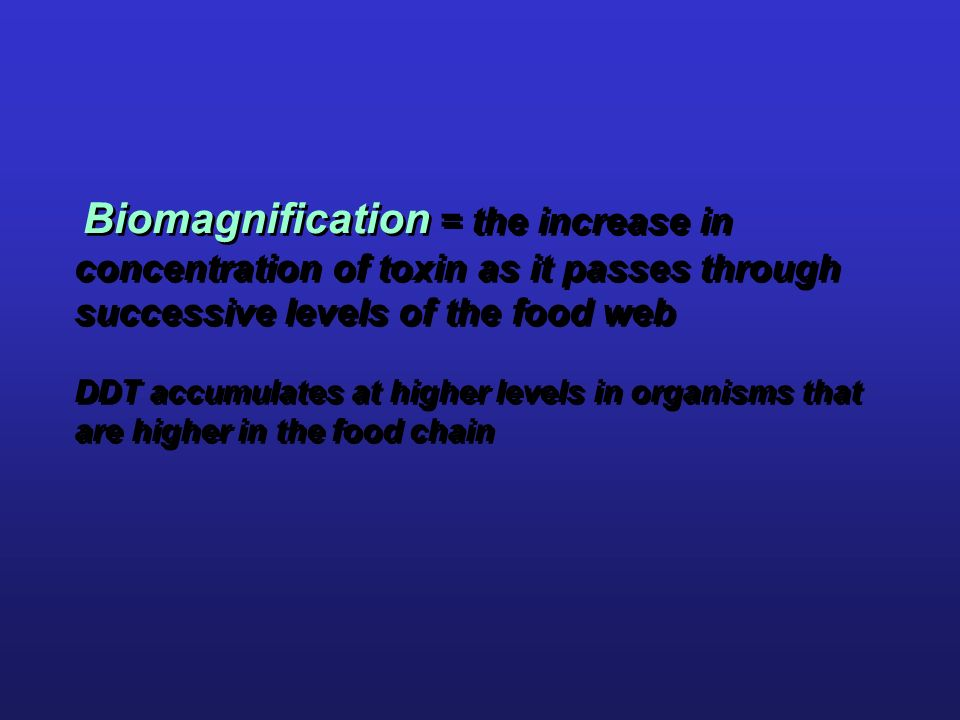 Biomagnification = the increase in concentration of toxin as it passes through successive levels of the food web DDT accumulates at higher levels in organisms that are higher in the food chain