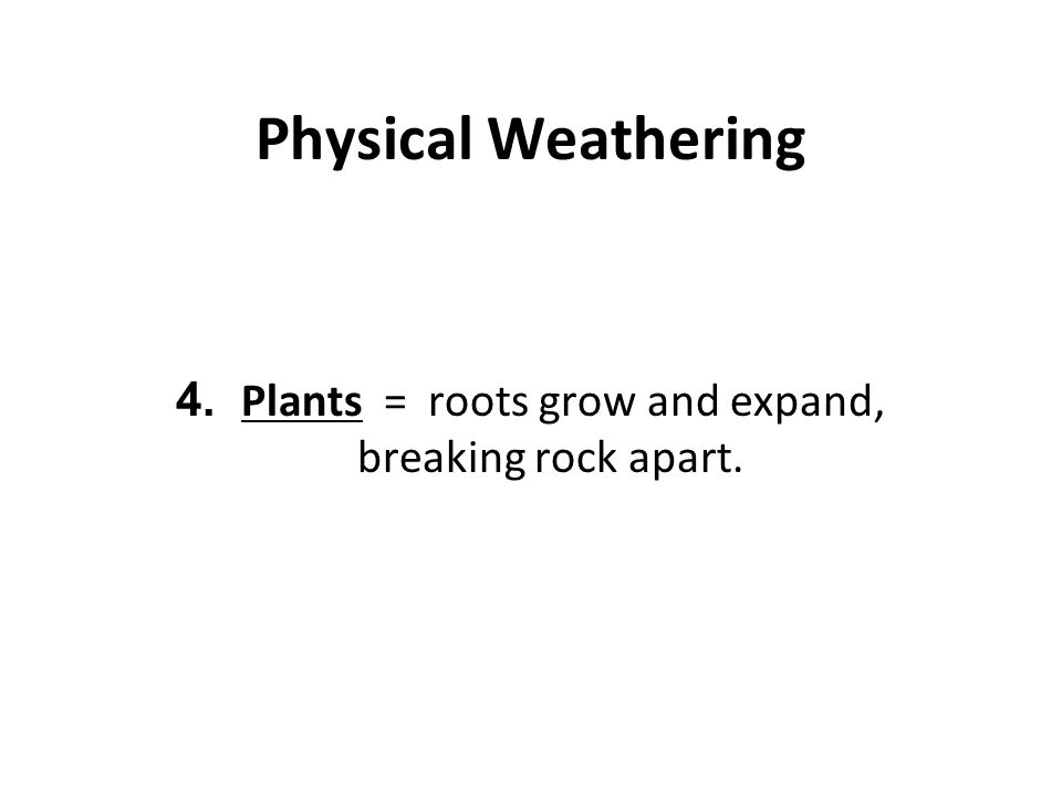 4. Plants = roots grow and expand, breaking rock apart.