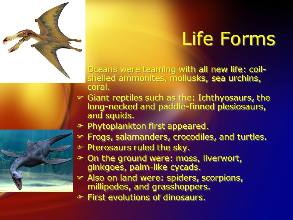 Life Forms Oceans were teaming with all new life: coil-shelled ammonites, mollusks, sea urchins, coral.