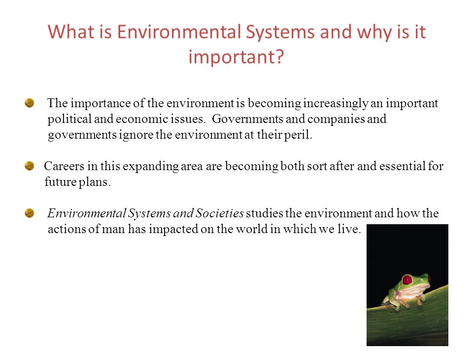 What is Environmental Systems and why is it important