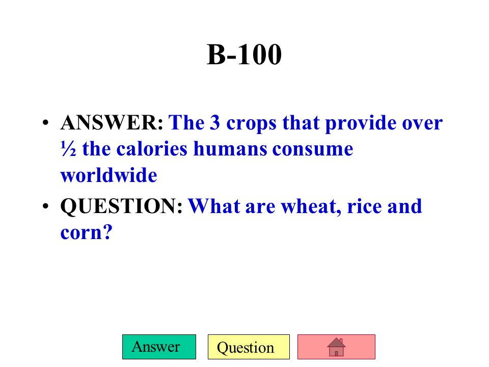 B-100 ANSWER: The 3 crops that provide over ½ the calories humans consume worldwide.