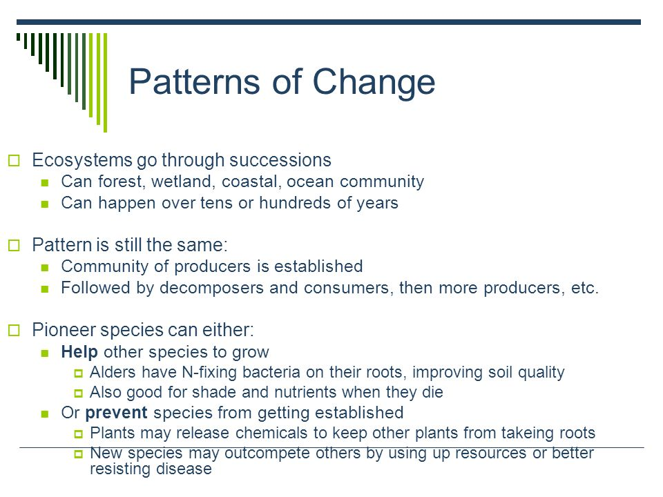 Patterns of Change Ecosystems go through successions
