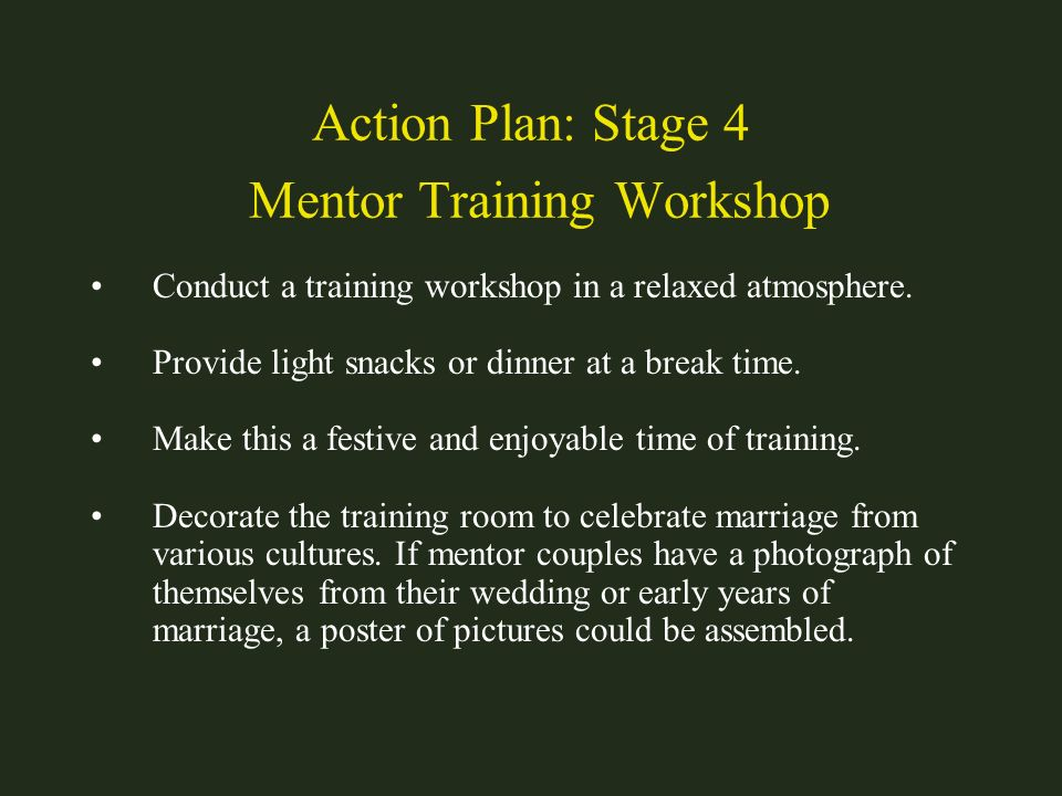 Action Plan: Stage 4 Mentor Training Workshop