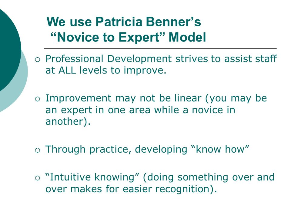We use Patricia Benner's Novice to Expert Model