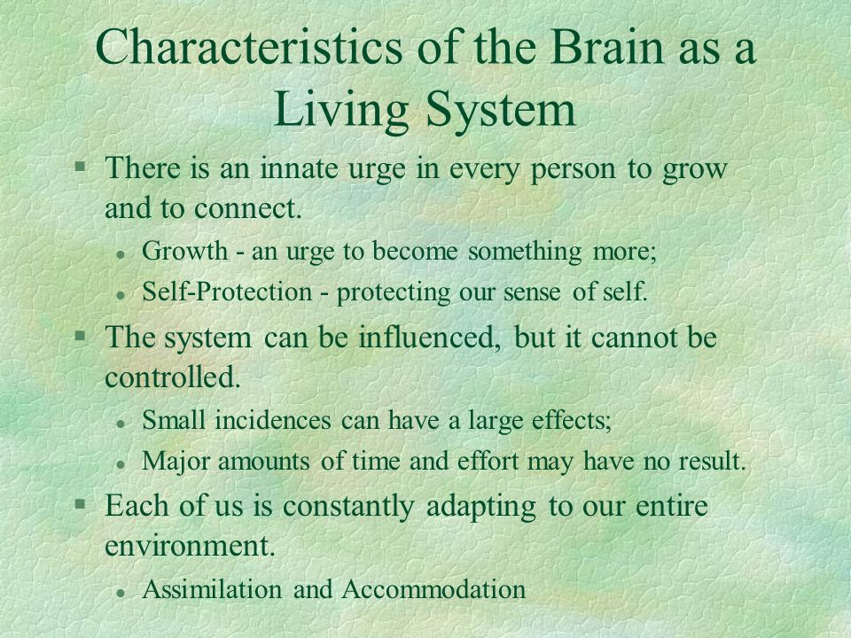 Characteristics of the Brain as a Living System