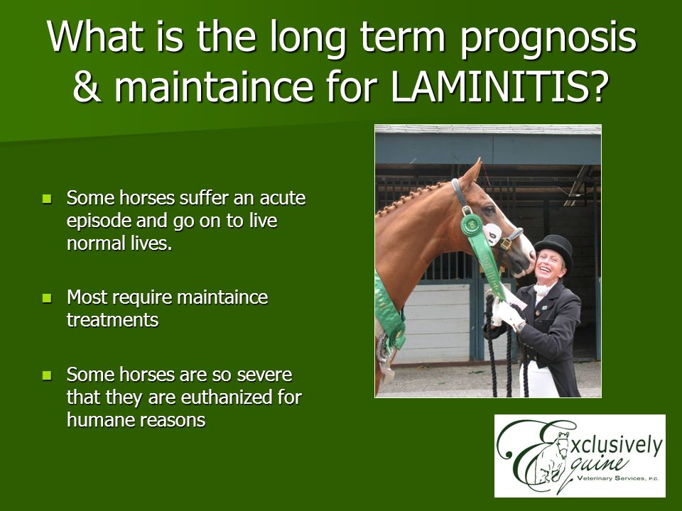 What is the long term prognosis & maintaince for LAMINITIS