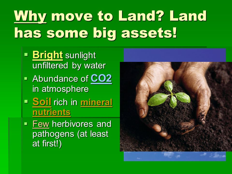 Why move to Land Land has some big assets!