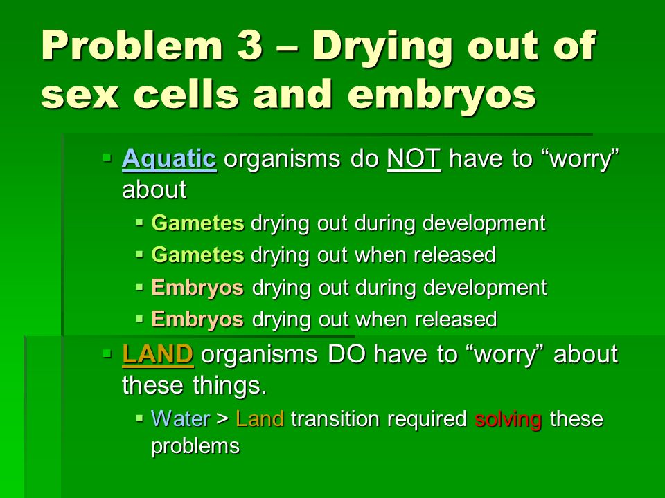 Problem 3 – Drying out of sex cells and embryos