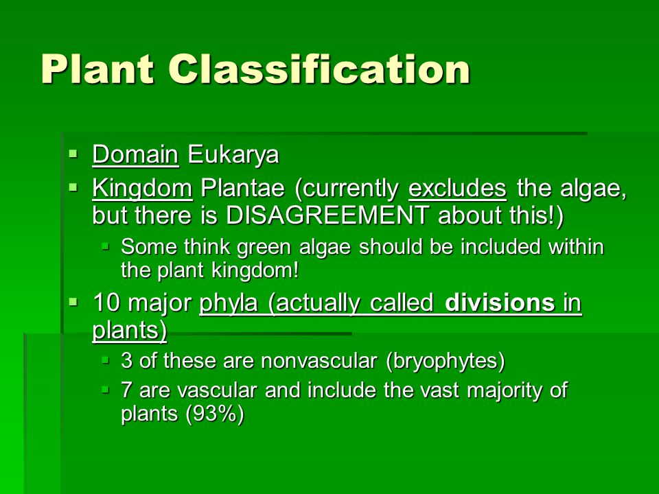 Plant Classification Domain Eukarya