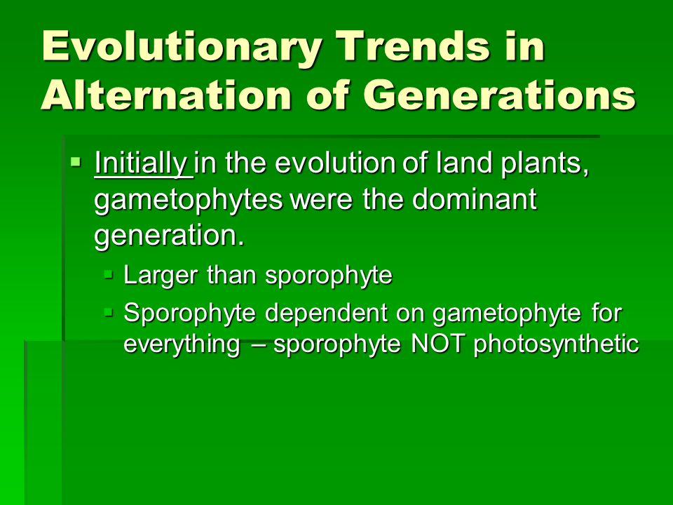 Evolutionary Trends in Alternation of Generations