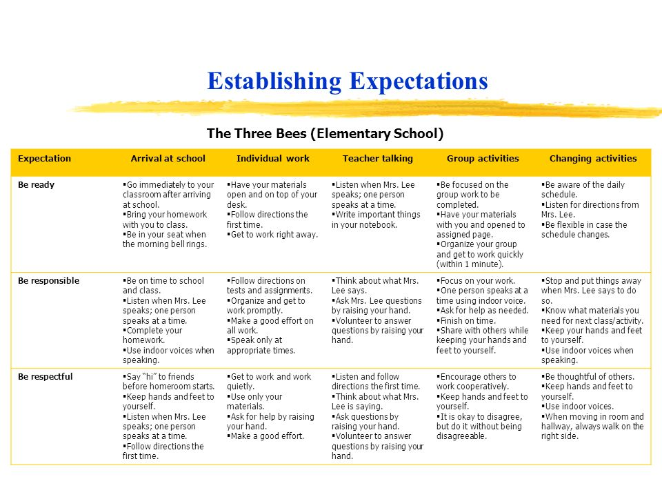 Establishing Expectations The Three Bees (Elementary School)