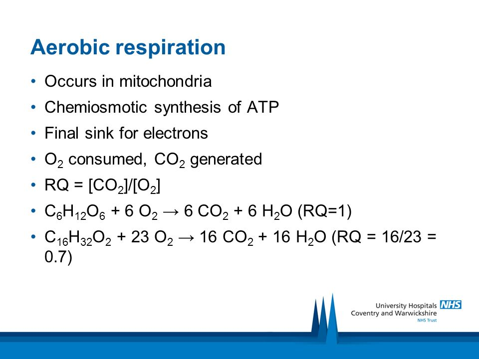 Aerobic respiration Occurs in mitochondria