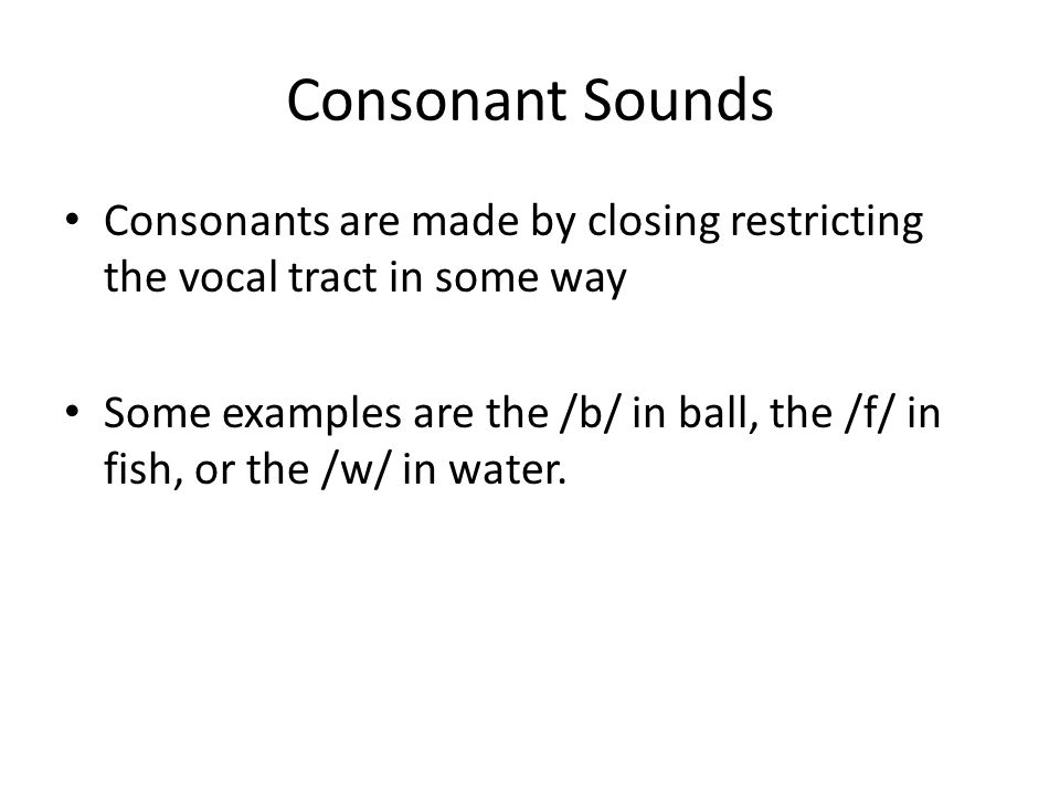 Consonant Sounds Consonants are made by closing restricting the vocal tract in some way.
